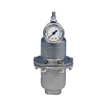 Pulsation Dampener, SS/Viton, 10 Cubic Inch, 1/2