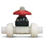 Kynar True Union Diaphragm Valve 1
