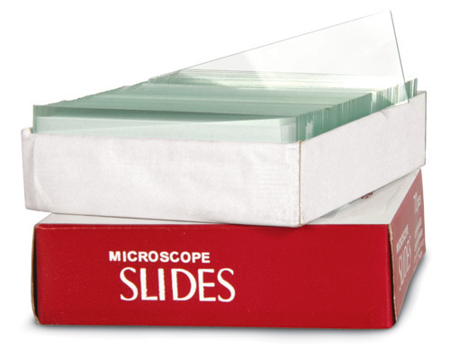 "Microscope Slides, Frosted 3"" x 1"", 72/pk"